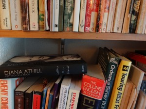 100 Bookshelf