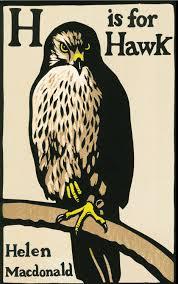 129 Hawk cover