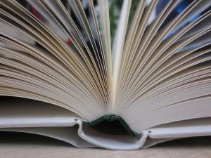 Turning pages of a book by Mummelgrummel, February 2013 via WikiCommons