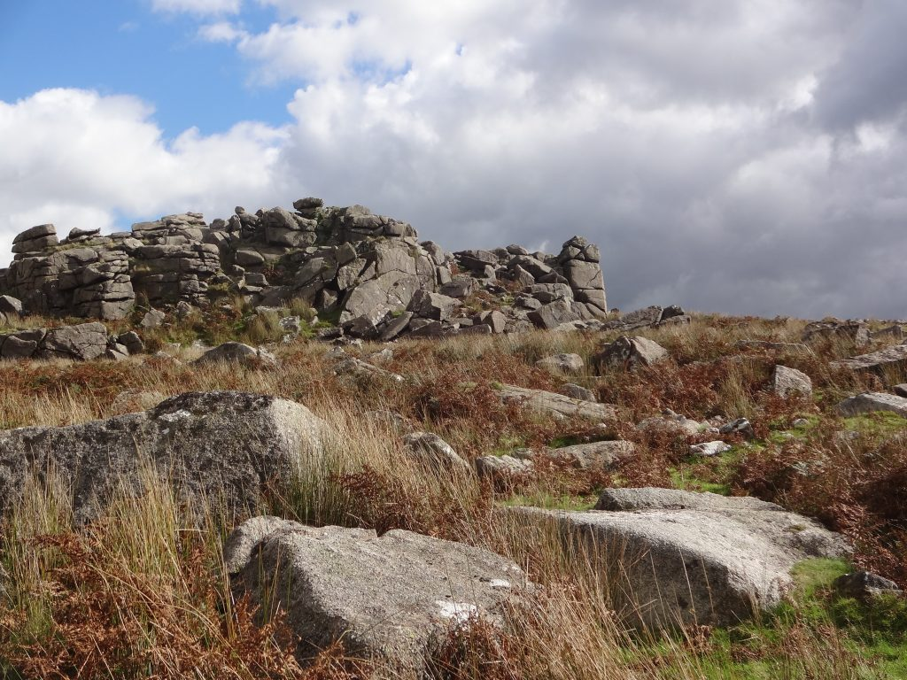 Trowelsworthy Tor, October 2016