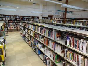 Library shelvesDSC00248