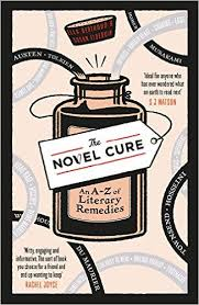 223 novel cure cover